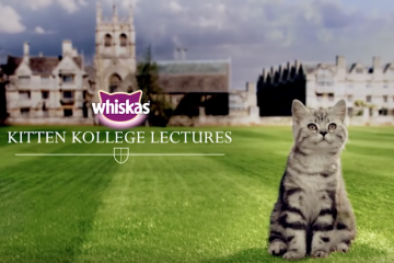 Whiskas branded content kitten college
